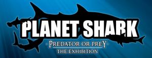 Planet Shark, Now At The GA Aquarium