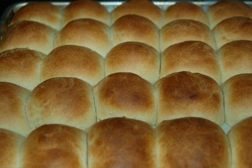 Rolls Fresh From The Oven. Should've Waited to Bake These...
