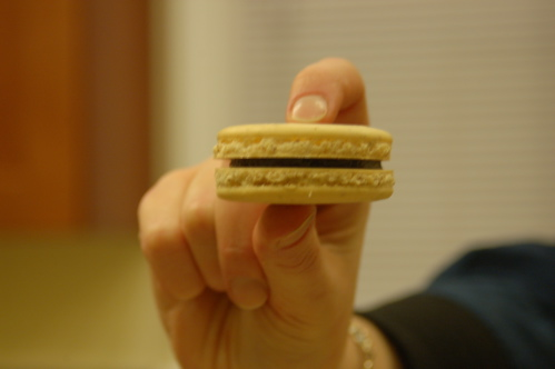 Helen's Perfect Macaron